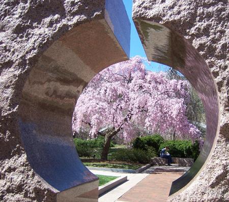 split stone flowers
