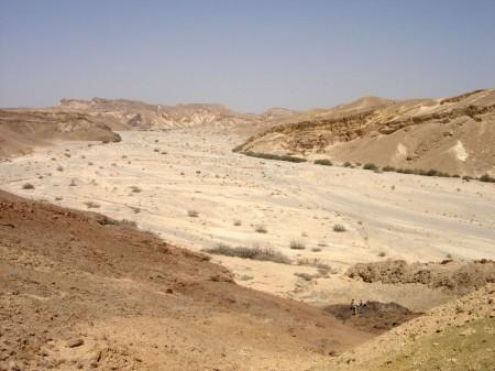wadi in the desert