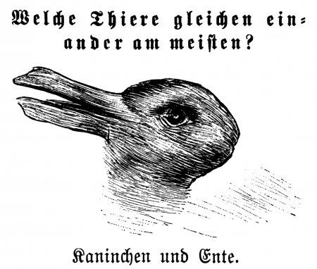 rabbit-duck illusion