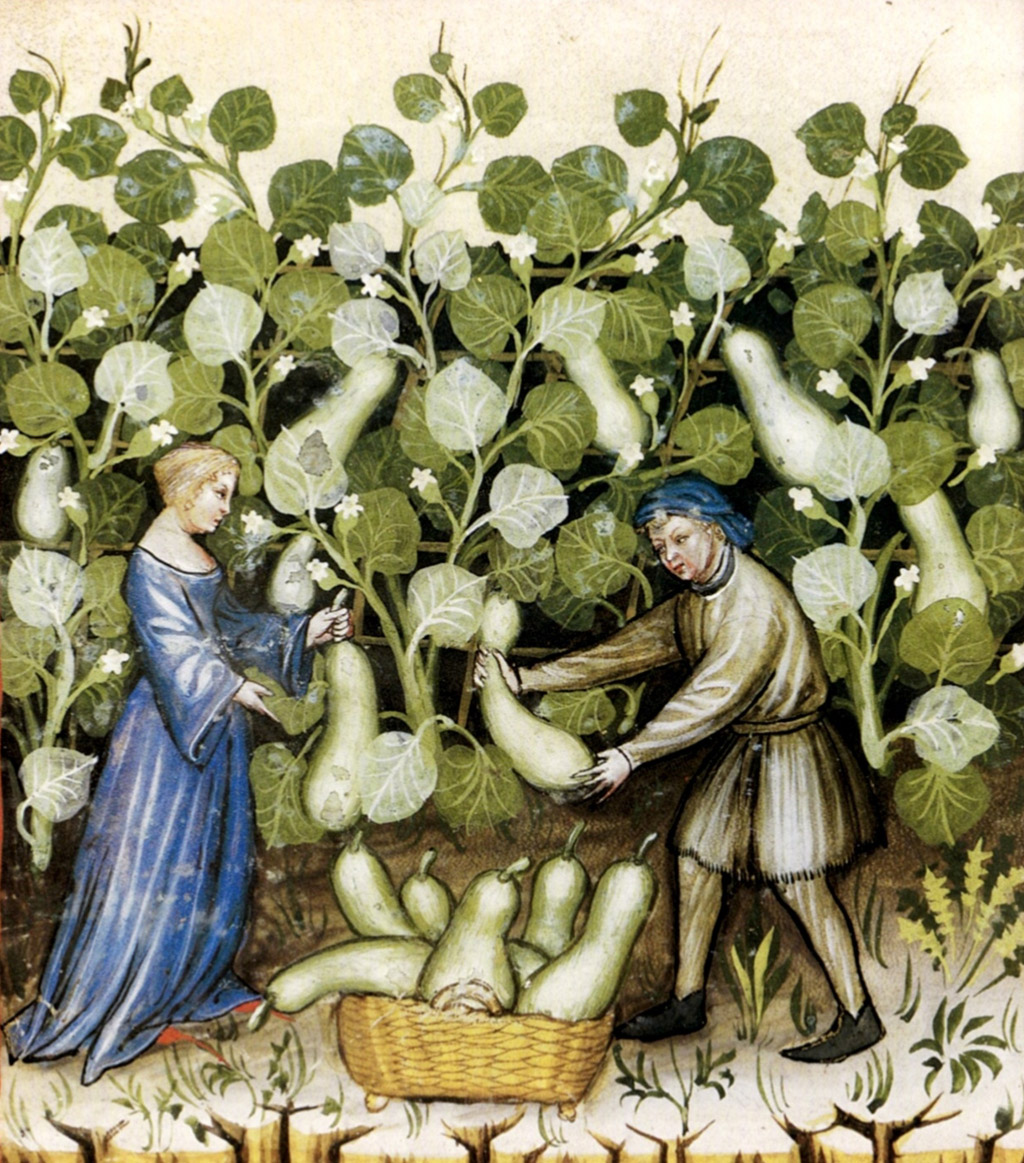 medieval woman and man gardening
