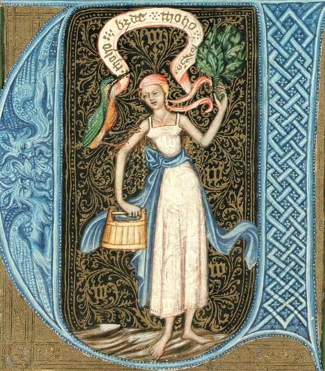 bathhouse woman from Wenceslas Bible